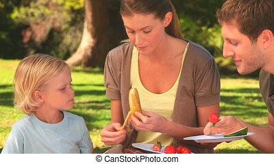 frutas, atraente, família come