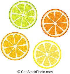 frutas, fatias, cítrico
