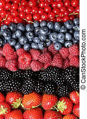 frutas frescas, fila