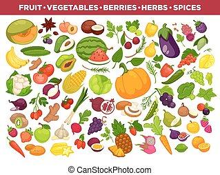frutas, legumes, bagas, e, temperos, vetorial, ícones, jogo