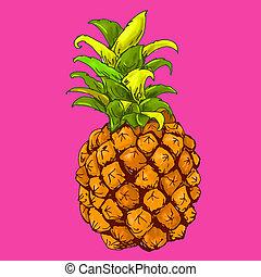 frutta, ananas, 犯罪者, rosa, fondo