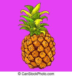 frutta, ananas, fodo, ビオラ