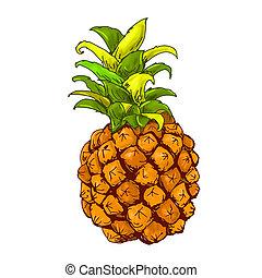 frutta, colori, ananas