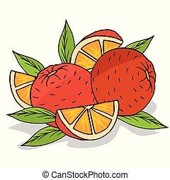 frutta, isolare, maturo, arance