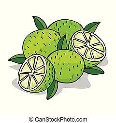 frutta, isolare, maturo, calce