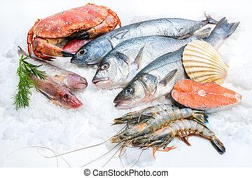frutti mare, ghiaccio
