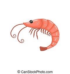 frutti mare, illustrazione, gamberetto, vettore, fresco, cartone animato