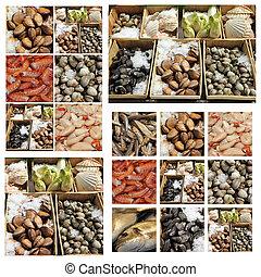 frutti, yegua, collage, di