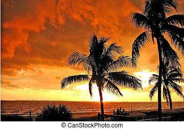 ft , #1, myers, παραλία , ηλιοβασίλεμα