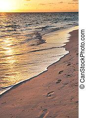 fußabdrücke, auf, sandiger strand, an, sonnenaufgang