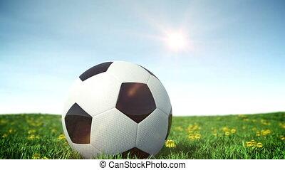 fußball ball, auf, a, grünes gras, feld