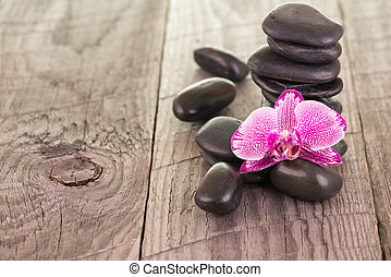 Fuchsia orchid and black stones