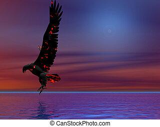 fuego, águila, azul