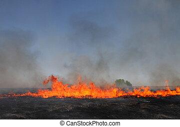 fuego de la pradera