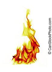 fuego, llamas, blanco, plano de fondo