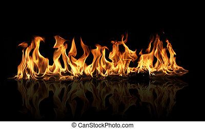 fuego, llamas, en, fondo negro