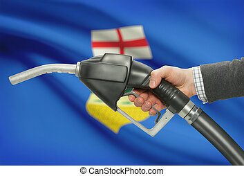 Fuel pump nozzle in hand with Canadian provinces flags on ...