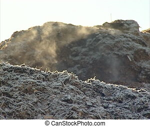 fuel sawdust pile winter - Evaporate pile of sawdust and...