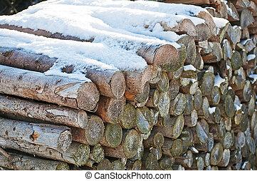 fuel-wood, 在中, 冬季