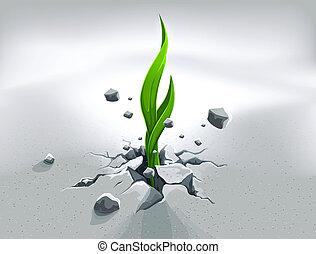 fuerte, brote, empujar, afuera, por, piedra, suelo
