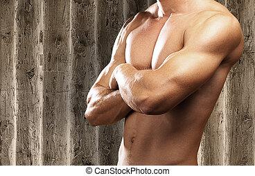 fuerte, torso