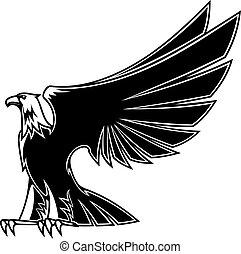 fuerte, y, majestuoso, águila