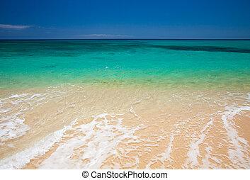 Fuerteventura, Burro Beach, part f Grandes Playas de...