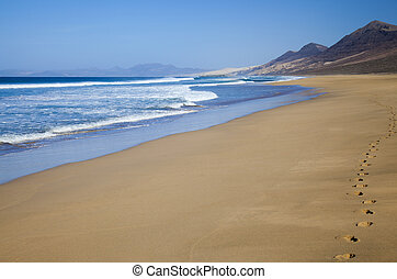 Fuerteventura, Canary Islands, Cofete beach - Fuerteventura,...