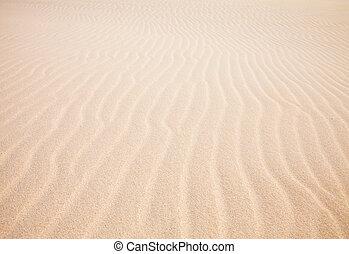 Fuerteventura; Corralejo sand dunes nature park