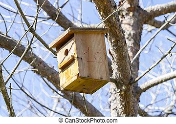 fugl hus, bird-box., sommer, træer, træ