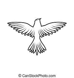 fugl, skitse
