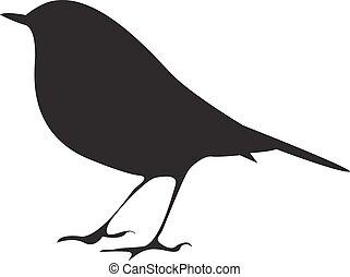 fugl, vektor, silhuet, branch., siddende, symbol