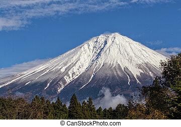 fuji, 끝내다, 정상, 산, 위로의