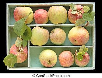 Fuji apples in a box
