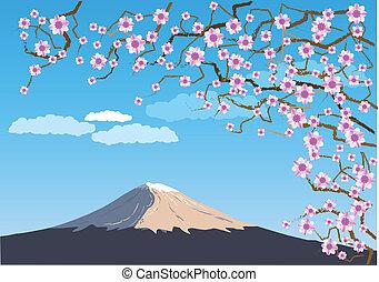 Fuji - Japanese hill Fuji under the rose blooms.