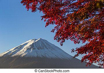 fuji, felmegy, leaf., ősz, japán, piros