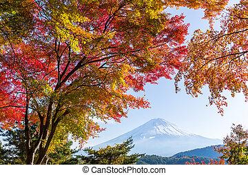 Fuji in autumn