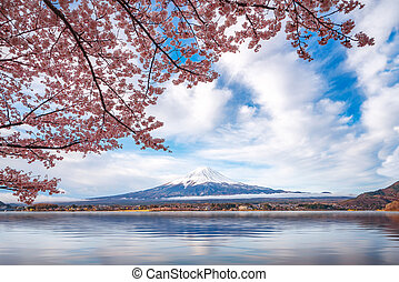 Fuji mountain with cheery blossom full blooming at lake ...