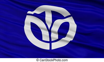 Fukui Prefecture Close Up Flag