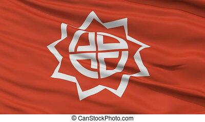 Fukushima Capital City Flag