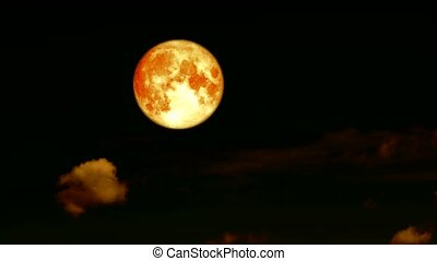 full blood harvest moon pass rolling cloud on night sky time lapse