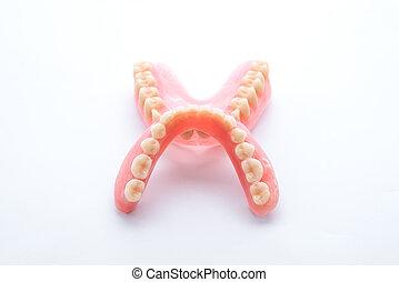 Full denture on white background