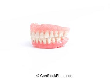 Full dentures on white background