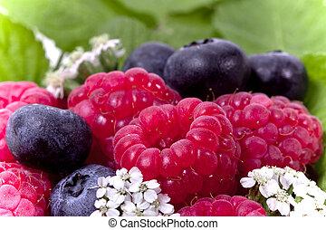Full frame ripe raspberry and blueberries
