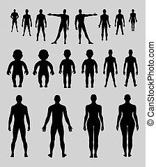 Full length front, back human