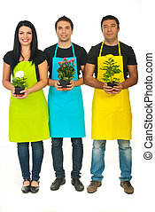 Full length of three florists team holding flowers in pots ...