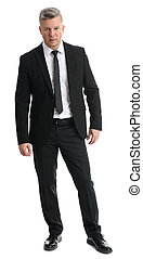 full length portrait of senior businessman