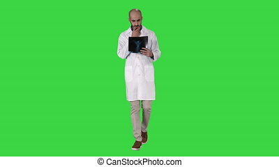 Doctor examining a lung radiography while walking on a Green Screen, Chroma Key.