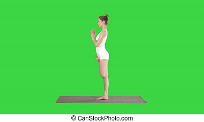 Young attractive woman practicing yoga doing tree exercise...