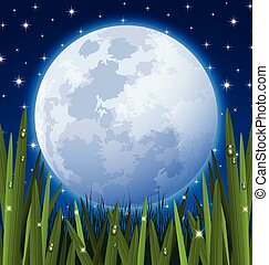 Full moon and grass meadow - Full moon and starry night sky...
